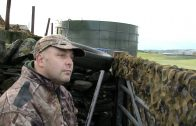 Crow shooting patrol with the Winchester SX3